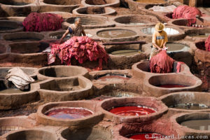 Fig: Leather tanning